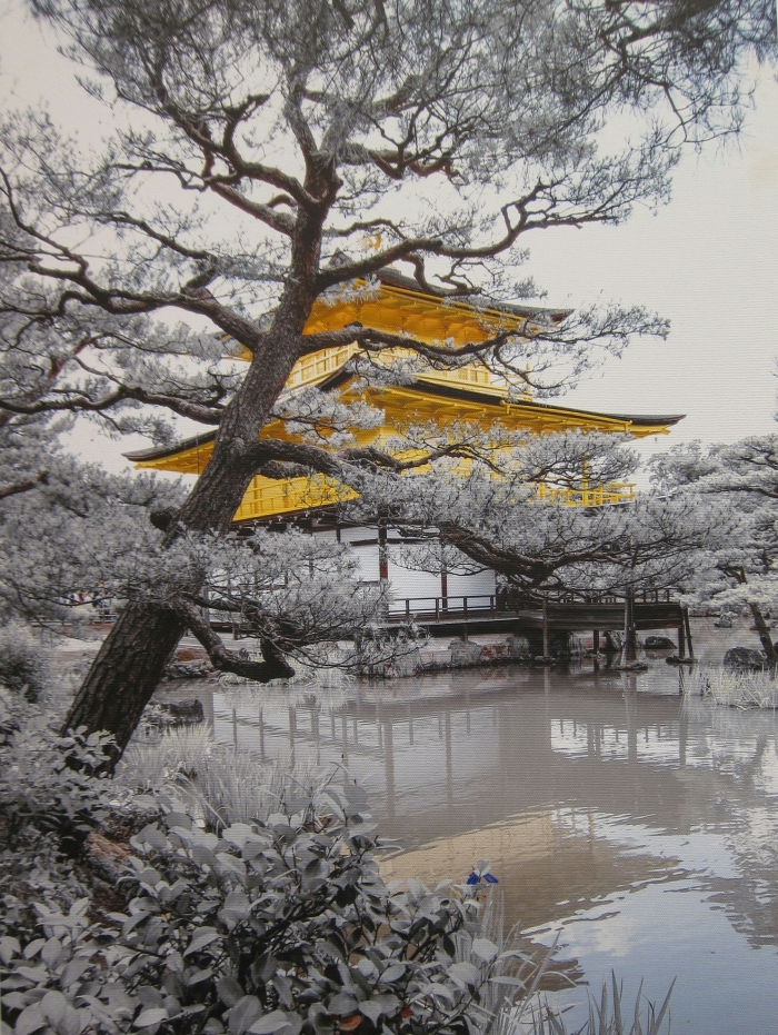 Japanese Tea 3