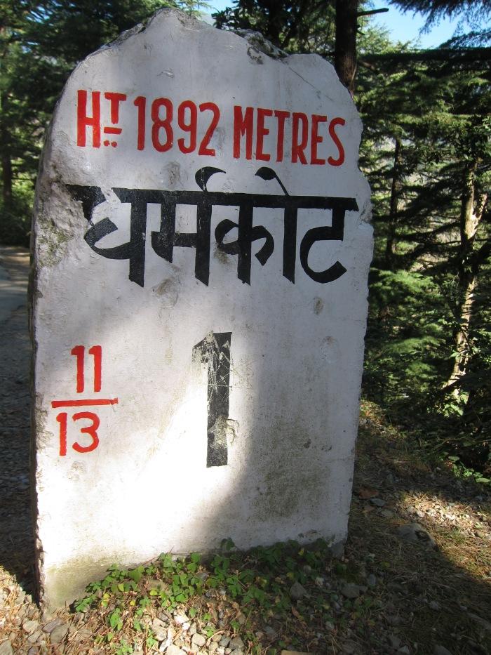 Near McLeodganj, Himachal Pradesh.