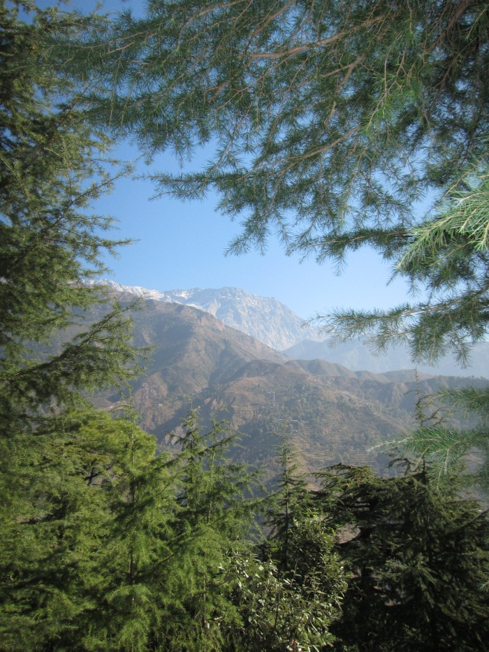 View of the Himalayan Dhauladar Range, from McLeodganj.