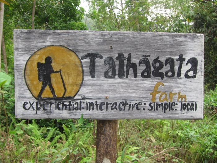 Tathagata Farm, Mineral Springs.