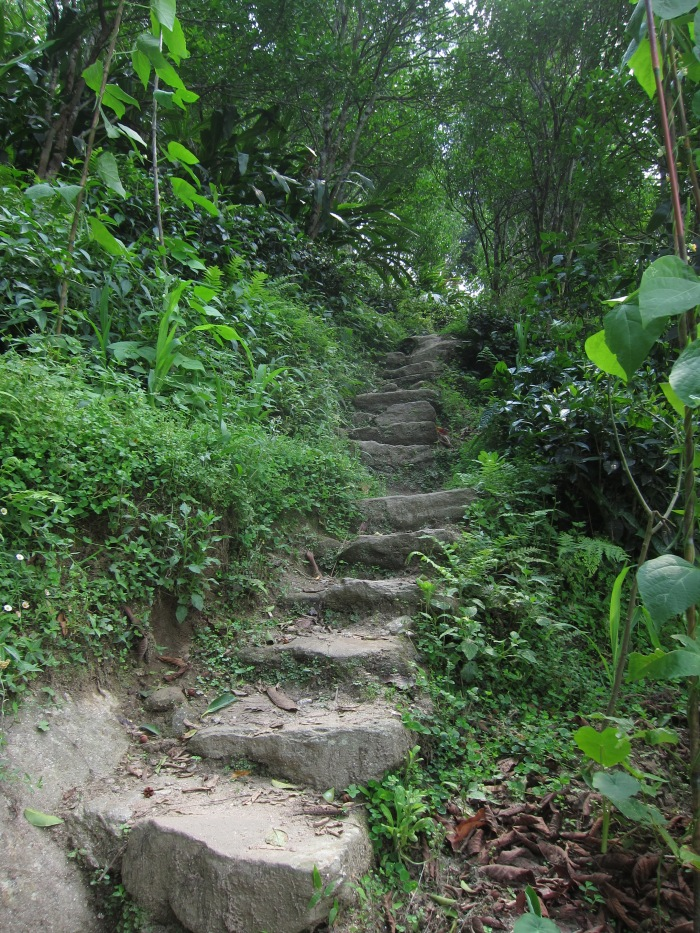 Steep steps leading up to Passang's home
